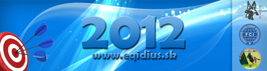 Eqidius achievements in 2012